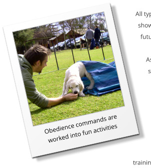 Obedience commands are worked into fun activities